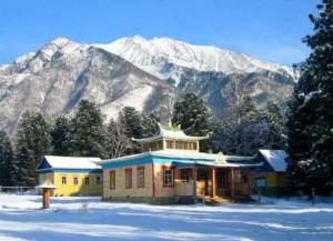 Зимний тур в Аршан